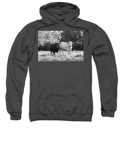 Black And White Cows Sweatshirt