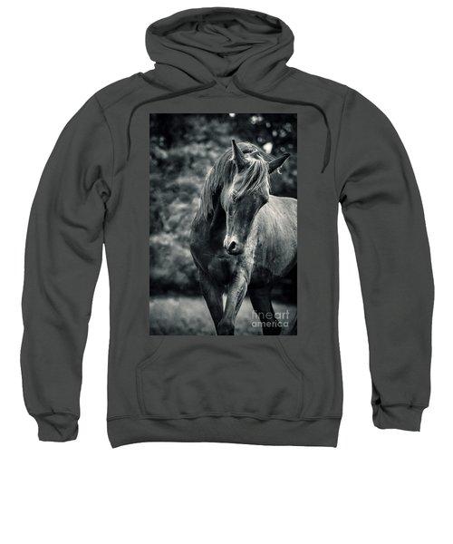 Black And White Portrait Of Horse Sweatshirt