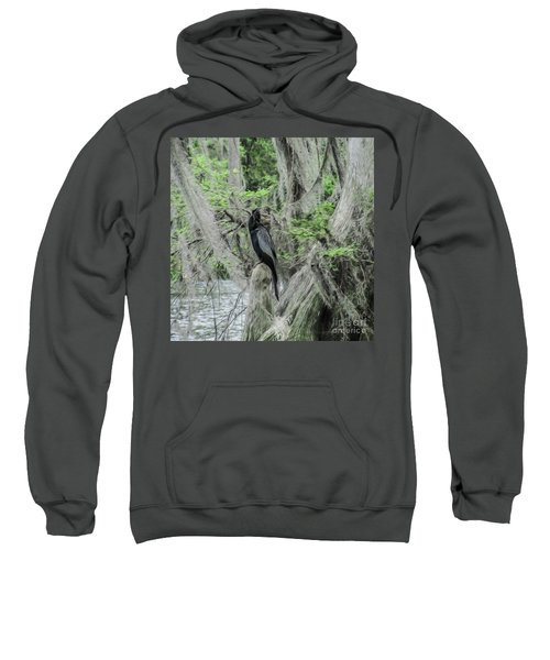Black Bird Waiting In The Moss Sweatshirt