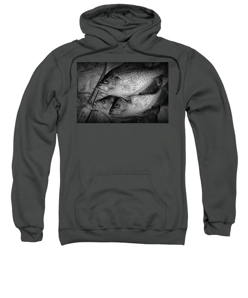Black Crappie Panfish With Fish Filet Knife In Black And White Sweatshirt