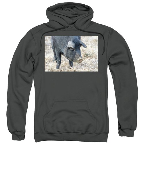 Sweatshirt featuring the photograph Black Pig Close-up by James BO Insogna