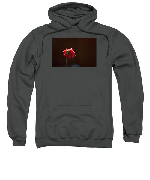 Sweatshirt featuring the photograph Black With Rose by Lora Lee Chapman
