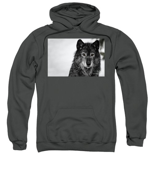 Black Wolf I Sweatshirt