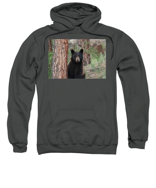 Blackbear2 Sweatshirt