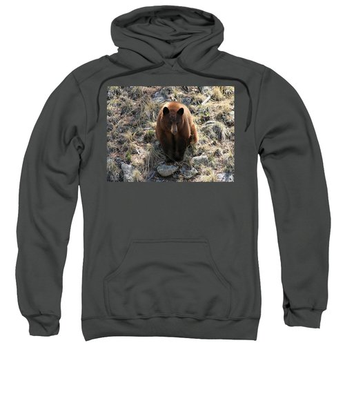 Blackbear4 Sweatshirt