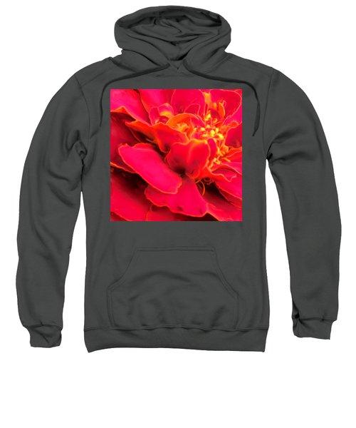 Blazing Pink Marigold Sweatshirt