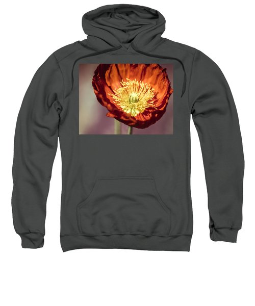 Blazing Sweatshirt