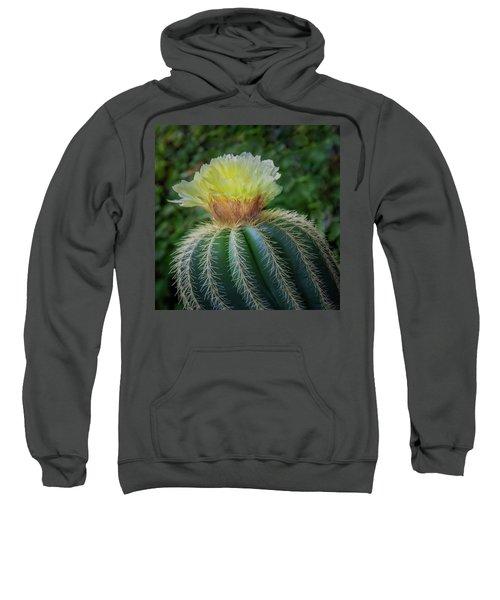 Blooming Cactus Sweatshirt