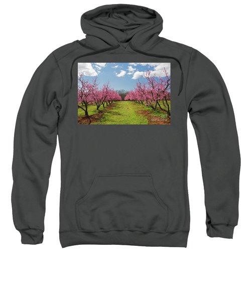 Blooming Peach Orchard 1 Sweatshirt