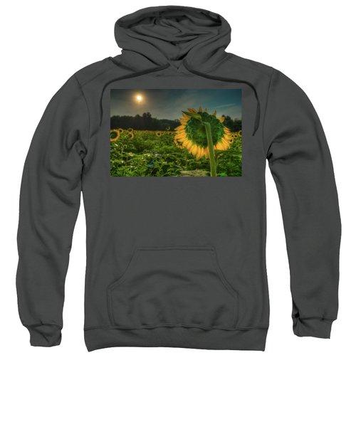Blooming Sunflower Facing Rising Sun Sweatshirt