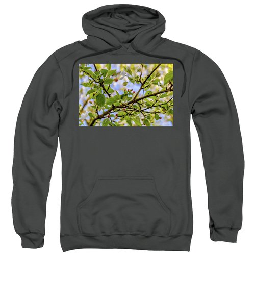 Blossoms And Leaves Sweatshirt