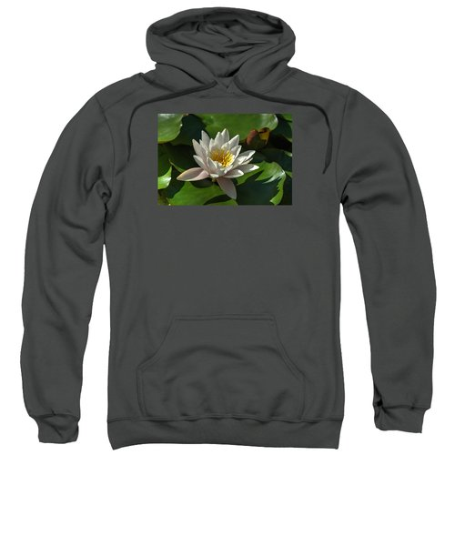 Blossoms And Lily Pads 8 Sweatshirt