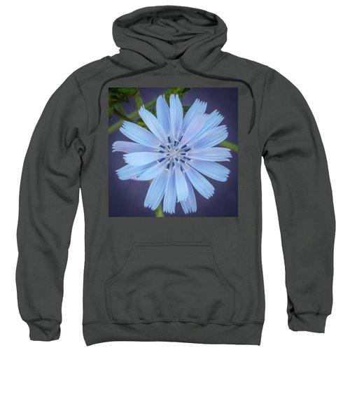 Blue And Beautiful Sweatshirt