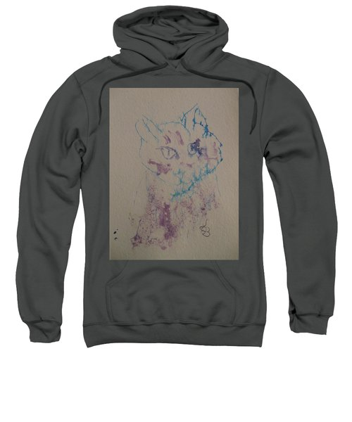 Blue And Purple Cat Sweatshirt