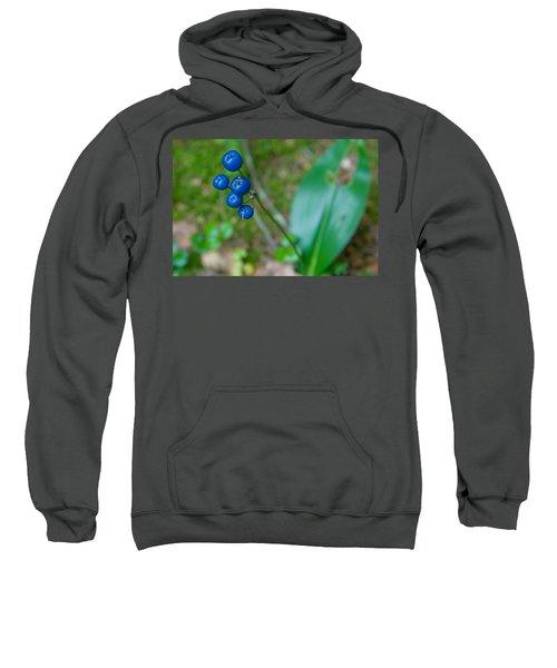Blue Berries Sweatshirt