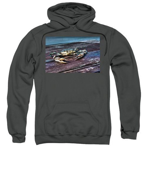 Blue Crab - Above View Sweatshirt