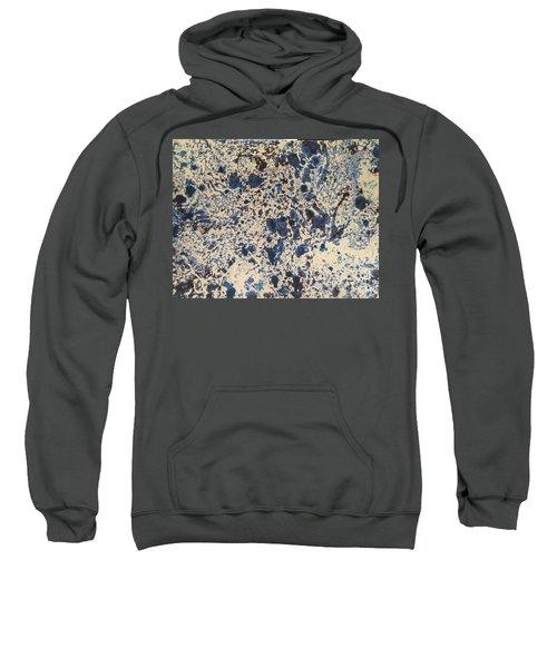 Blue Ecru Sweatshirt