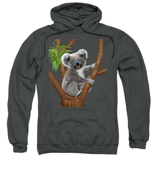 Blue-eyed Baby Koala Sweatshirt