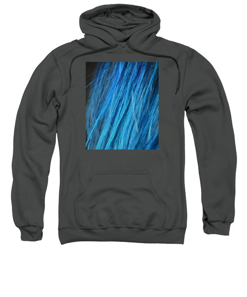 Blue Hair Sweatshirt