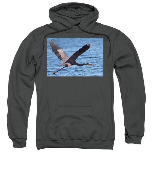 Blue Heron Wingspan Sweatshirt