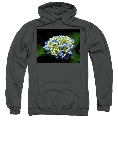 Blue Hydrangea Onstage 2620 H_2 Sweatshirt