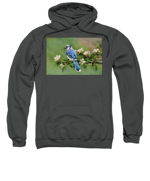 Blue Jay And Blossoms Sweatshirt