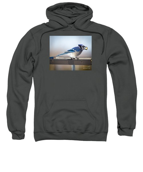 Sweatshirt featuring the photograph Blue Jay With A Mouth Full by Ricky L Jones