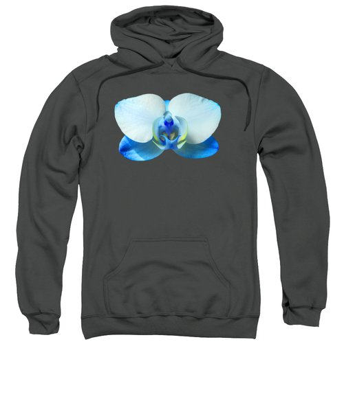 Blue Orchid 1 Sweatshirt by Scott Carruthers