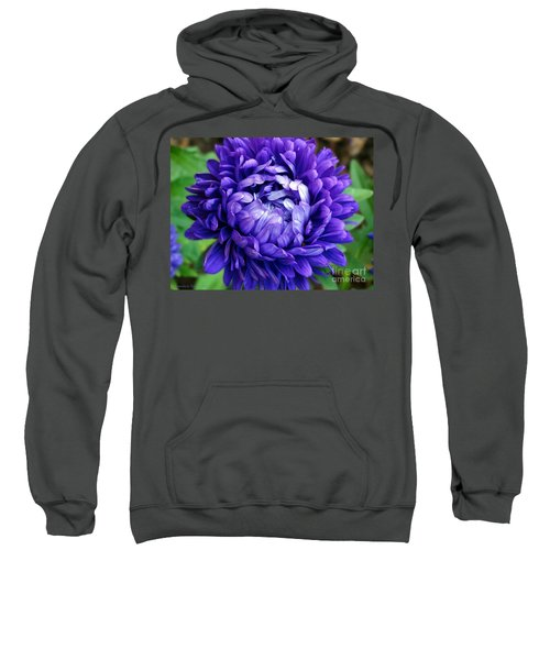 Blue Petals Sweatshirt