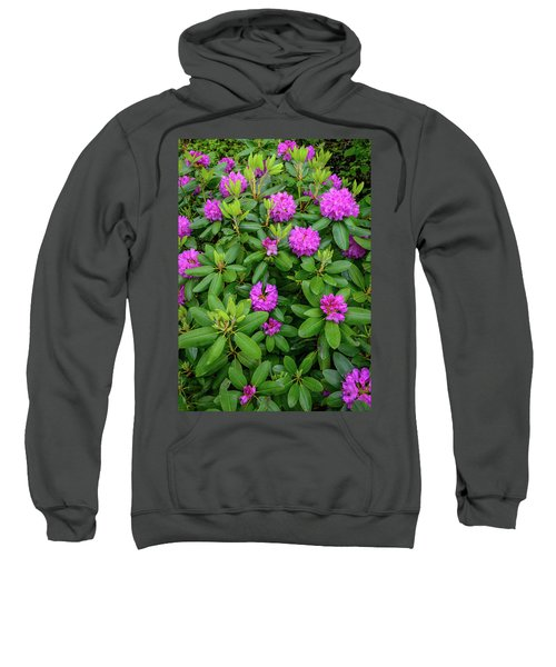 Blue Ridge Mountains Rhododendron Blooming Sweatshirt
