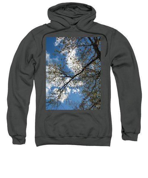 Blue Skies Sweatshirt