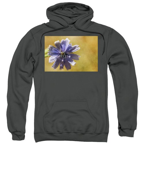 Blue Star #2 Sweatshirt
