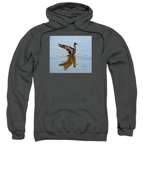 Blue Winged Teal 3 Sweatshirt