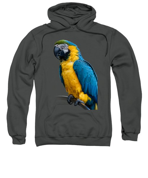 Blue Yellow Macaw No.1 Sweatshirt