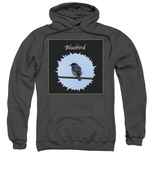 Bluebird Sweatshirt by Jan M Holden