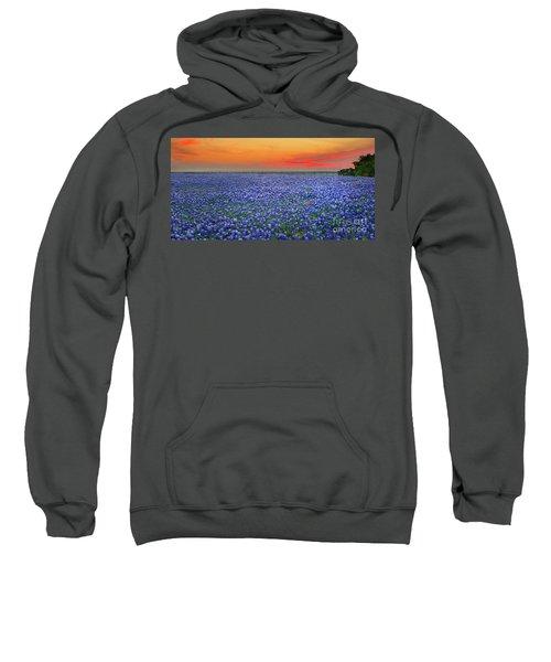 Bluebonnet Sunset Vista - Texas Landscape Sweatshirt