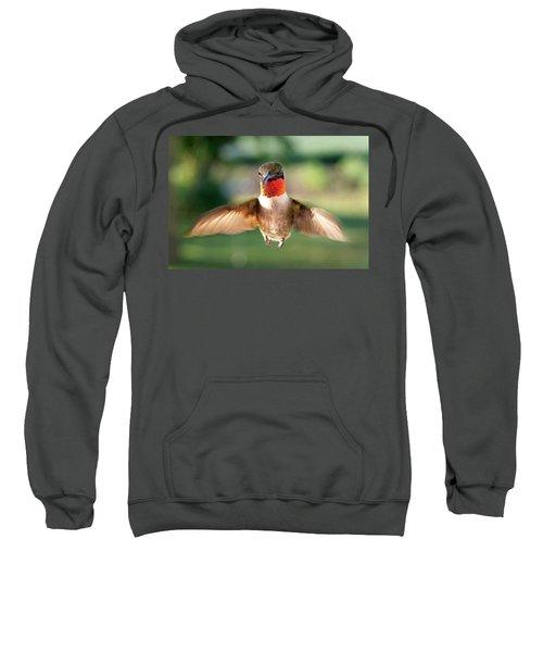 Boastful  Sweatshirt by Bill Pevlor