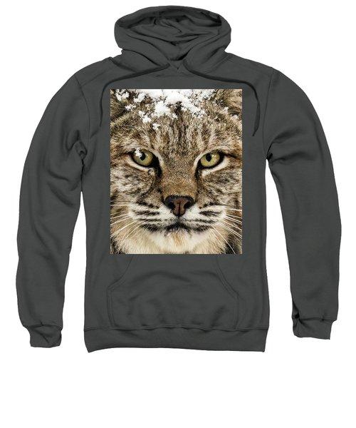 Bobcat Whiskers Sweatshirt