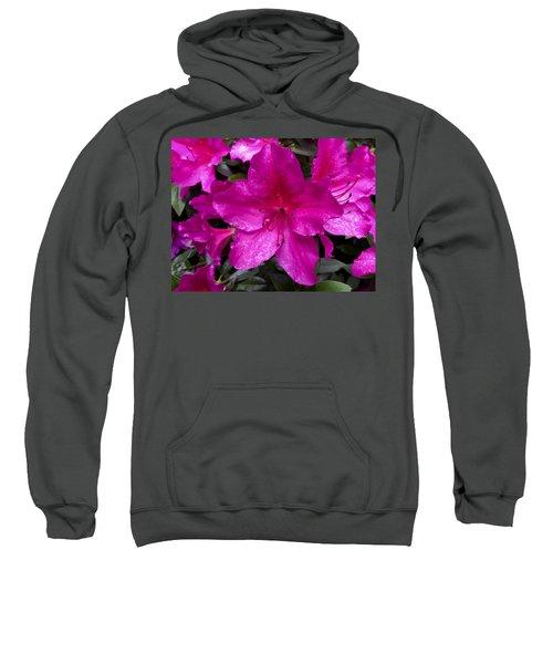 Bold Pink Flower Sweatshirt