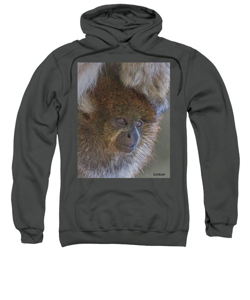 Bolivian Grey Titi Monkey Sweatshirt