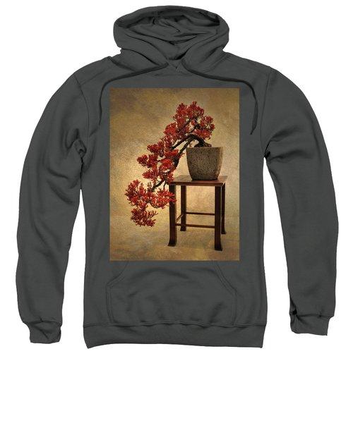 Bonsai Beauty Sweatshirt