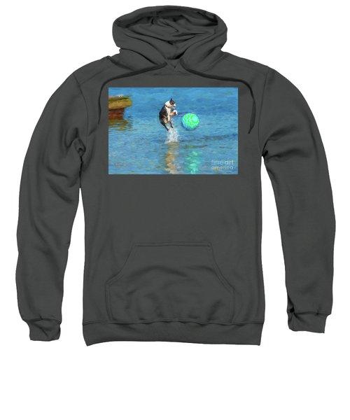 Boston Terrier Jump - Painterly Sweatshirt