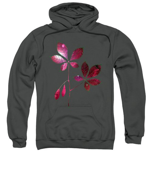 Botany 4 Sweatshirt