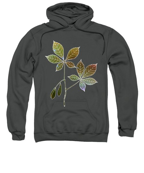 Botany 5 Sweatshirt