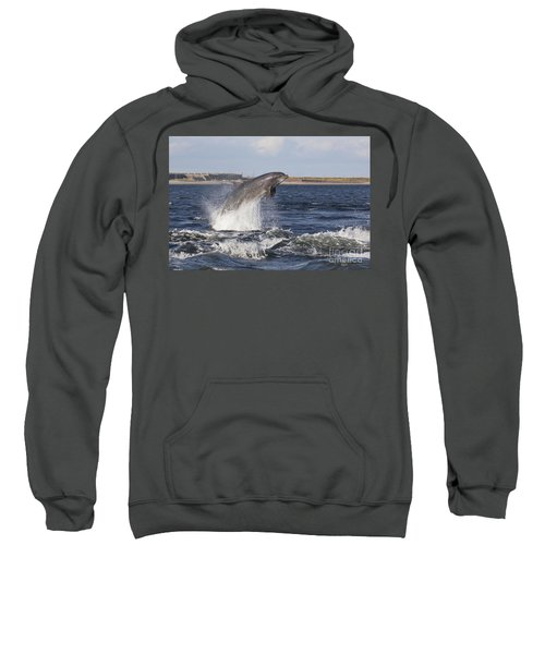 Bottlenose Dolphin - Scotland  #26 Sweatshirt