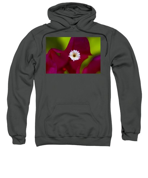 Bougainvillea Sweatshirt