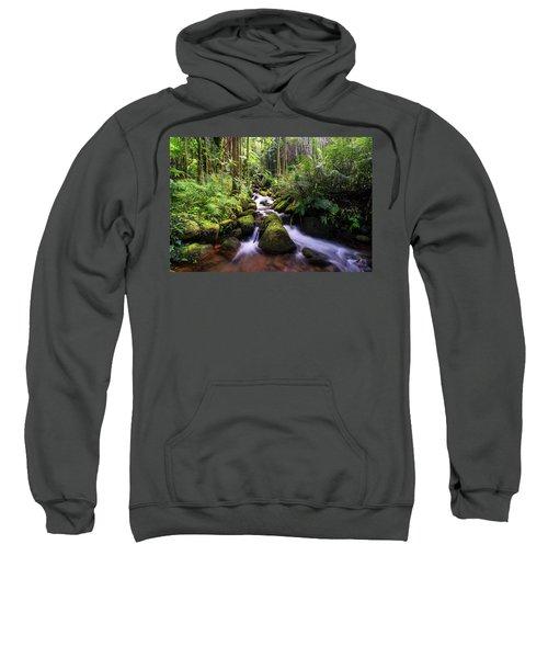 Boulder Creek Falls Sweatshirt