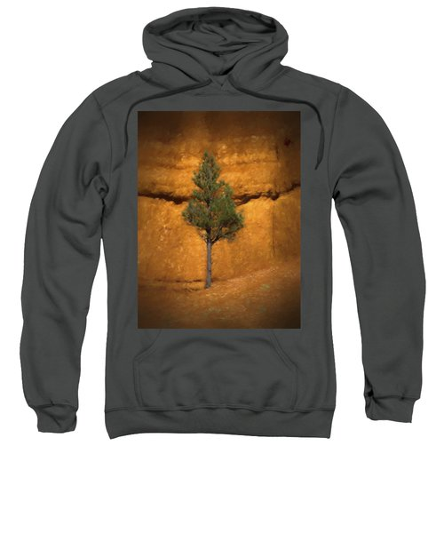 Box Canyon Pine Sweatshirt
