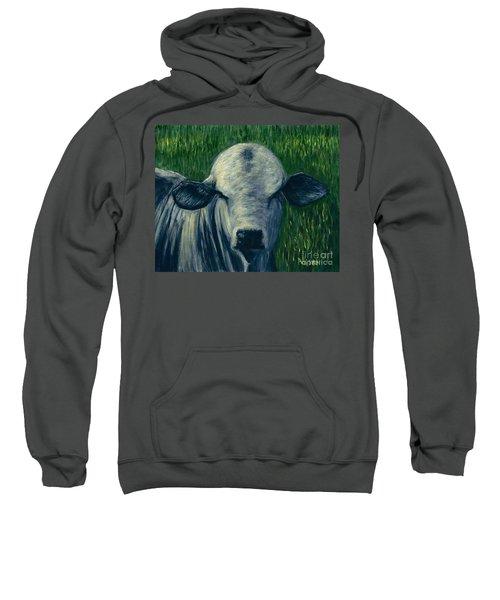 Brahma Bull  Sweatshirt