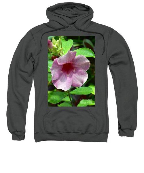 Bright Mandevillia Sweatshirt